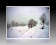 La nevicata del 2009