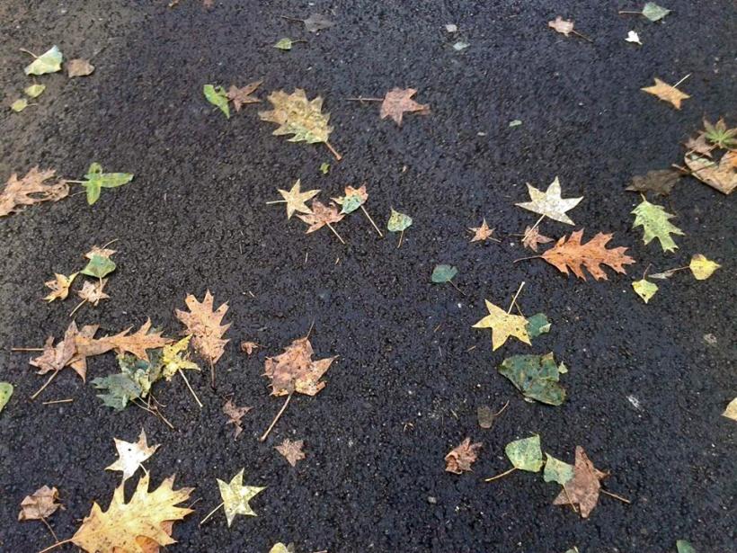 asfalto1.jpg