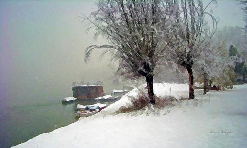 la-casa-sul-fiume23